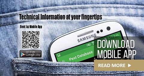 mobile-app-home
